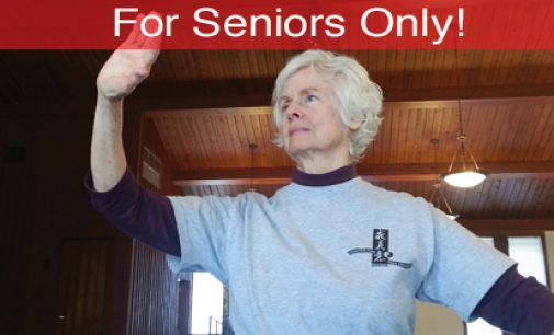 For Seniors Only: Chair Chi: Tai Chi for Older Adults