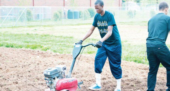 Grant to strengthen community garden program