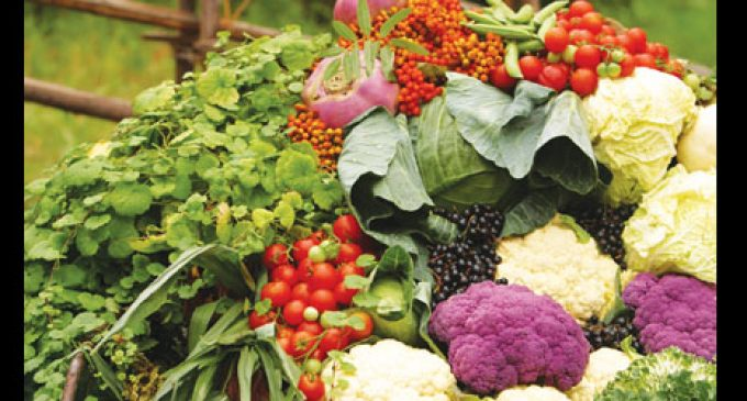 Study: Local food benefits health and economy