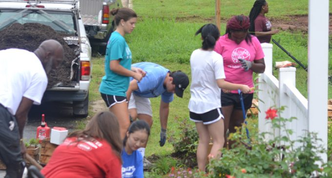 Blank Space Project takes over Kimberly Park garden