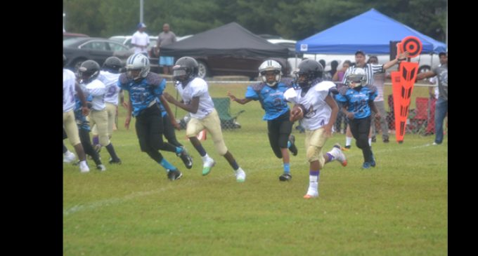 Ravens whip Panthers in Mighty Mite division