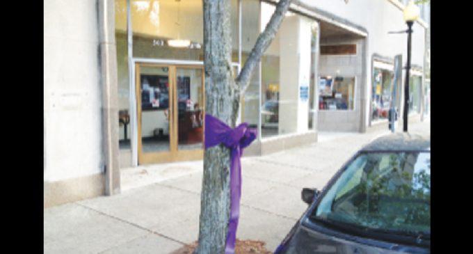 Anti-obesity effort paints the town purple