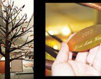 Hospital's tree fetes organ donors