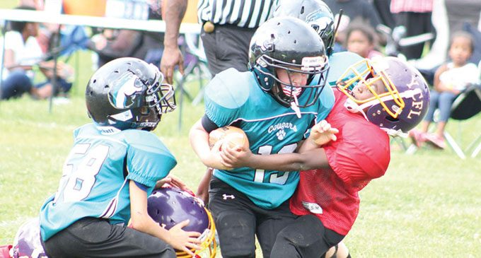 Youth football league holds jamboree at Carver High