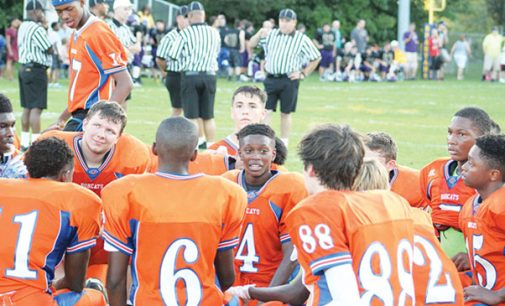 Jamboree gives coaches a look at their teams, competition