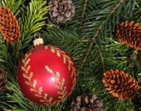 5 tips to fight the holiday blues
