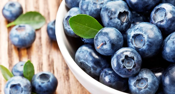 Enjoy blueberries in July, which is Blueberry Month
