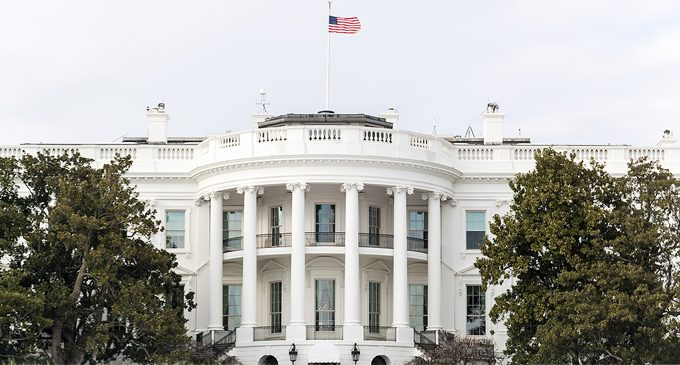 Amarosa and the White House have a thing going on!