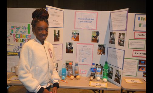 WS/FCS holds district wide science fairs