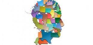 Making Sense of the 2020 Census