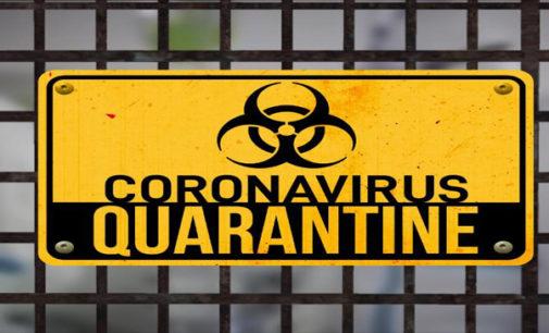 Commentary: Quarantine quarrels and 10 helpful hints