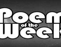 Poem of the Week: Mandemic (Virus in the form of a man)