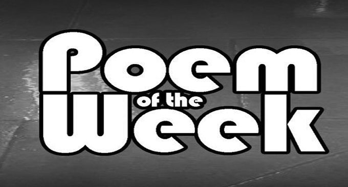 Poem of the Week: Mandemic (Virus in the form of a man) - WS Chronicle