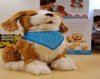 Senior Services shares companionship with seniors through  Automated Pets Initiative